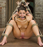 Predicament bondage & hogtie suspension