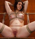 Tied up, pegged, vibed, dildo ass-fucked