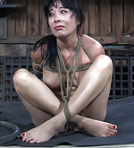 Roped, tit clamped, caned, dildoed, vibed
