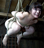 Roped, suspended, dildoed, trained to suck