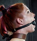 Cuffed, gagged, tit-clamped, ass-hooked, trained