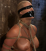 Roped, brutally gagged, dildoed, vibed