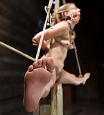 Beauty pegged, trained, roped, vibed, dildoed