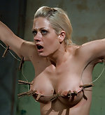 Roped, pegged, trained and vibed