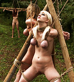 Three girls roped and suspended outdoors
