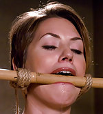 Sarah roped, pegged, vibed and fist fucked