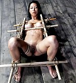 Roped, fixed with bamboo, vibed, dildoed