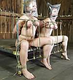 Two naked beauties roped together