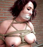 Roped, tape-gagged, nipple-clamped, hogtied