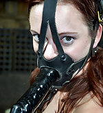 Roped, penis-gagged, trained humiliatingly